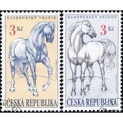 Kladrubští koně -...