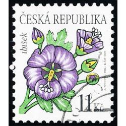 Krása květů - ibišek - č....