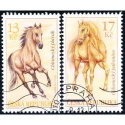 Koně - Chlumecký plavák a...